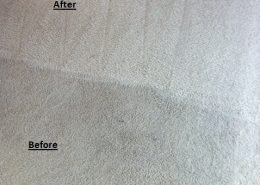 Synthetic Carpet Cleaning