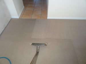 carpet steam cleaning and vacuuming