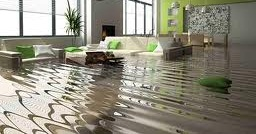 flooded carpets and furniture
