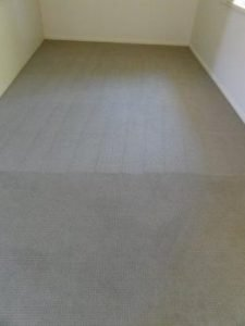 Carpet Steam Cleaning Results