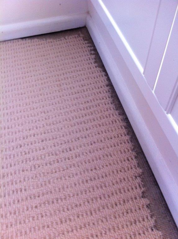 Damage To Wool Carpet From Beetle Larvae
