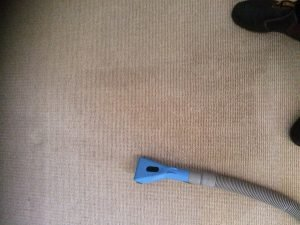 carpet cleaning of red wine stain